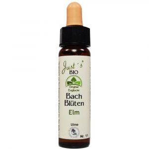 elm bio bachblüte
