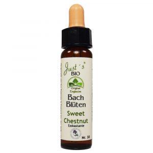 Sweet Chestnut/ Edelkastanie Nr. 30 Bio Bachblüten Tropfen original englische Qualität