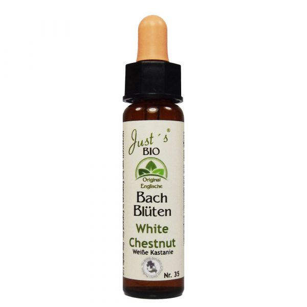 White Chestnut/ Rosskastanie Nr. 35 Bio Bachblüten Tropfen original englische Qualität