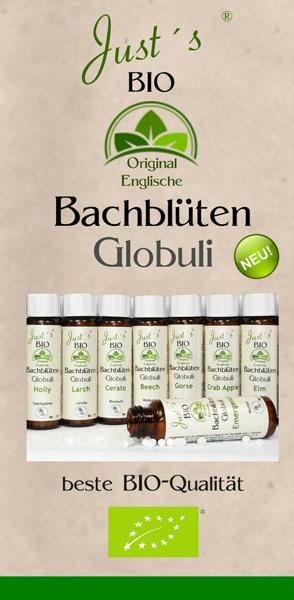 Globuli Flyer der original englischen BIO Bachblüten zum downloaden.